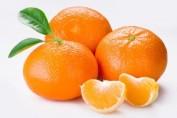 mandarina-1-300x200